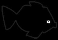 Goldfish Kids Web Store